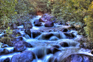 Wairere falls stream
